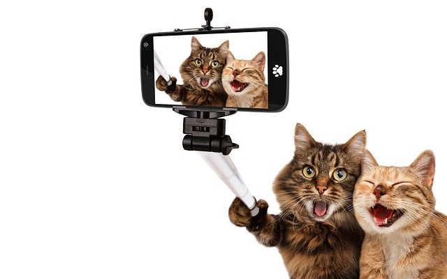 Как лучше фотографироваться